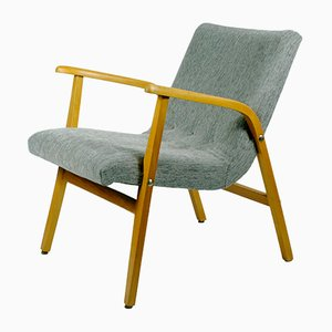 Austrian Armchair by Roland Rainer for Emil & Alfred Pollak, 1950s