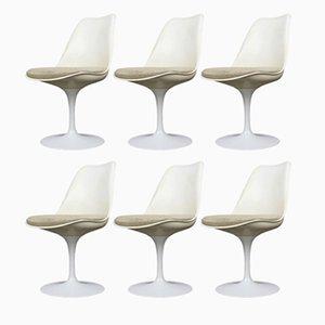 Sillas Tulip de Eero Saarinen para Knoll International, años 60. Juego de 6