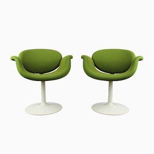 Kleine Tulip Stühle von Pierre Paulin für Artifort, 1963, 2er Set