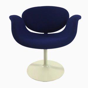 Blauer Little Tulip Armlehnstuhl von Pierre Paulin für Artifort, 1960er