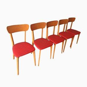 Sillas de madera y escay rojo, años 60. Juego de 5