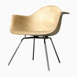 Sedia SAX con bordo a forma di corda di Charles & Ray Eames per Zenith Plastics, anni '50