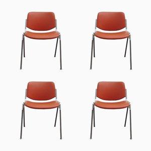Chaises Empilables DSC 106 par Giancarlo Piretti pour Castelli, 1970s, Set de 4