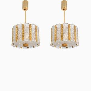 Lámparas colgantes de tambor austriacas de bronce bañado en oro de Kalmar, años 60. Juego de 2