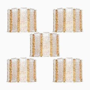 Apliques de pared chapados en oro de Kalmar, años 60. Juego de 5