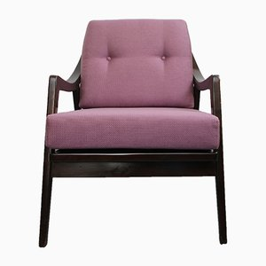 Armchair with Violet Cushions, 1950s