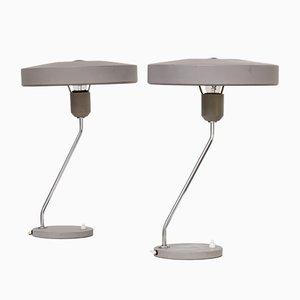 Tischlampen von Louis Kalff für Philips, 1960er, 2er Set