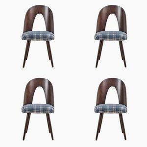 Esszimmerstühle von Antonin Suman für Tatra Nábytok, 4er Set