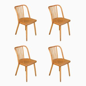 Czech Dining Chairs by Antonin Suman for TON, 1960s, Set of 4