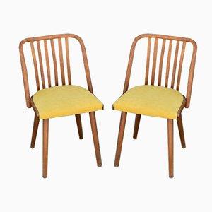 Tschechische Esszimmerstühle von Jitona Sobeslav, 1960er, 2er Set