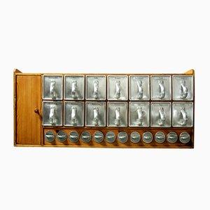 Dispensa Frankfurt Kitchen con 14 cassetti e 12 barattoli in vetro portaspezie di Margarete Schütte-Lihotzky, anni '50