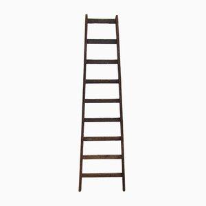 Industrial Wooden Ladder, 1950s