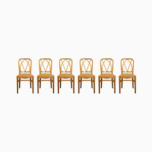 Light Ash Chairs, 1950s, Set of 6