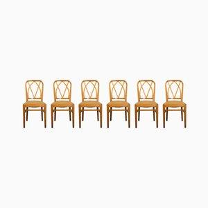 Stühle aus Heller Esche, 1950er, 6er Set