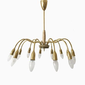 Mid-Century Sputnik 12-Armed Chandelier from Vereinigte Werkstätten Collection, 1950s