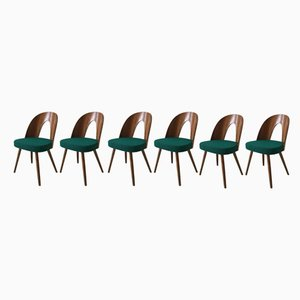 Green Dining Room Chairs by Antonin Suman for Tatra, 1960s, Set of 6
