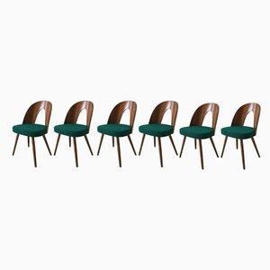 Grüne Esszimmerstühle von Antonin Suman für Tatra, 1960er, 6er Set