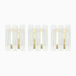 Appliques Tubulaires en Laiton et Verre Givré de Doria, 1960s, Set de 3