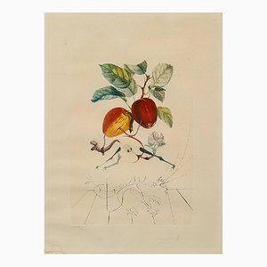 Photolithography FlorDali/ Les Fruits by Salvador Dali, 1968