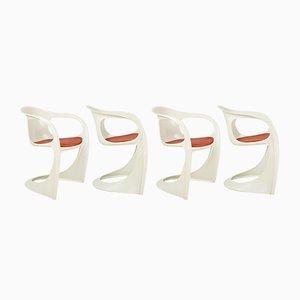 Moderne italienische Esszimmerstühle von Alexander Begge für Casala, 1970er, 4er Set