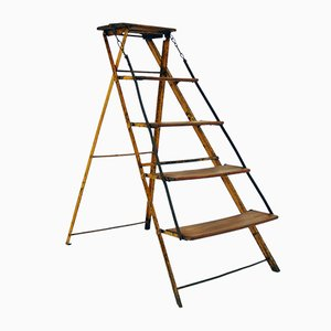 French Vintage Ladder