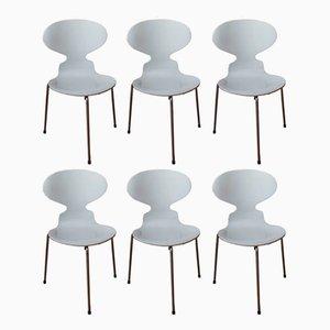 Ant Chairs von Arne Jacobsen für Fritz Hansen, 1972, 6er Set