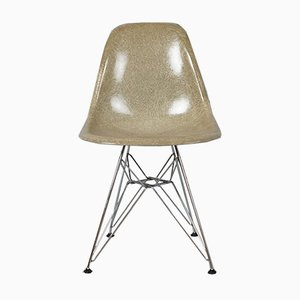 DSR Fiberglass Chair with Eiffel Base by Charles & Ray Eames for Herman Miller, 1950s