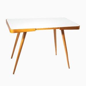 Vintage Czechoslovakian Conference Table by Cesky Nabytek