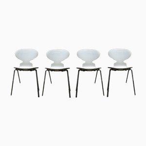 Ant Chairs von Arne Jacobsen für Fritz Hansen, 1952, 4er Set