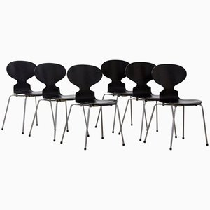 Chaises Fourmi par Arne Jacobsen, 1952, Set de 6
