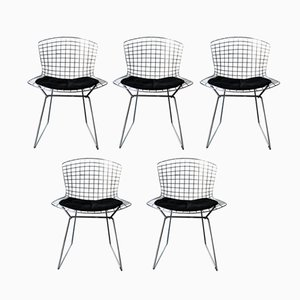 Chairs by Harry Bertoia for Knoll International, 1950s, Set of 5