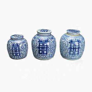Jarrones de jengibre chinos antiguos. Juego de 3