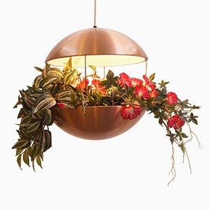 Lampe RS25 en Forme de Fleur Vintage par Poul Cadovius pour H.F Belysning