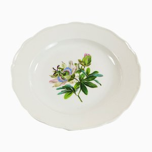 Piatto Meissen con fiore della passione di H. Dietze, anni '20