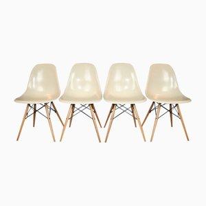 Chaises d'Appoint par Charles & Ray Eames pour Herman Miller, 1950s, Set de 4
