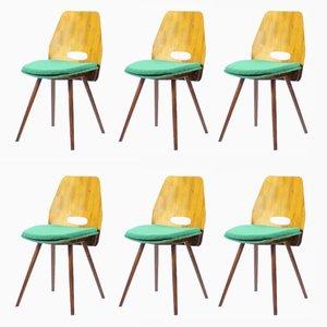 Esszimmerstühle mit Walnuss-Furnier von Frantisek Jirak für Tatra, 1960er, 6er Set