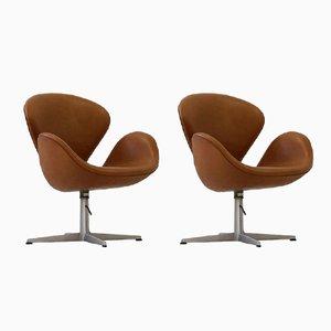 Swan Sessel aus Leder von Arne Jacobsen für Fritz Hansen, 1960er, 2er Set