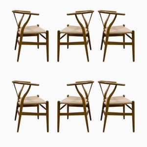 Vintage CH24 Wishbone Stühle von Hans Wegner für Carl Hansen & Søn, 6er Set
