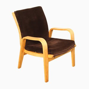 FB06 Armchair by Cees Braakman for Pastoe, 1950s