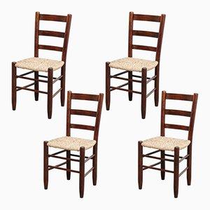 Modell 19 Stühle von Charlotte Perriand, 1950er, 4er Set