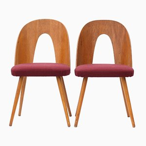 Plywood Chairs by Antonín Šuman for Tatra, 1960s, Set of 2