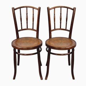 Bugholz Stühle mit Blumen Sitz, 1910er, 2er Set