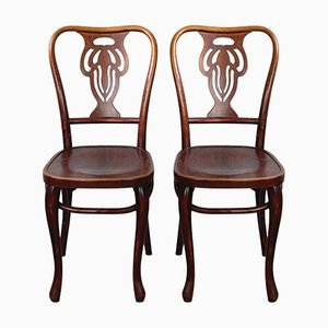 Bentwood Chairs Stained in Mahogany, 1920s, Set of 2