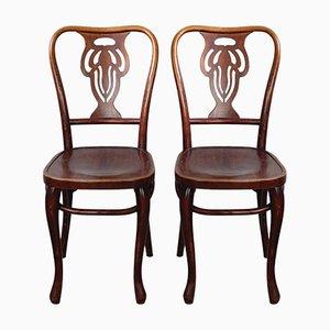 Bugholz Stühle Mahagoni Gebeizt, 1920er, 2er Set