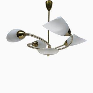 Lámpara de araña checa Mid-Century con 4 brazos