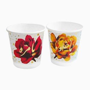 Bicchieri di carta con rosa e stelle di Rana Salam, set di 2