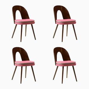 Tschechoslowakische Stühle von Antonin Suman für Tatra, 1960er, 4er Set