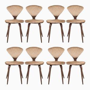 Chaises de Salon Vintage par Norman Cherner pour Plycraft, Set de 8