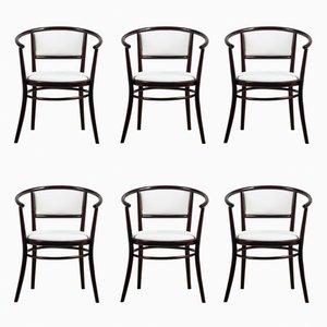 Stühle aus Bugholz von TON, 1970er, 6er Set