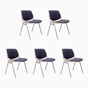 DSC 106 Stühle von Giancarlo Piretti für Castelli, 1970er, 5er Set